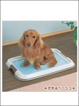 Toilet Tray For Dog